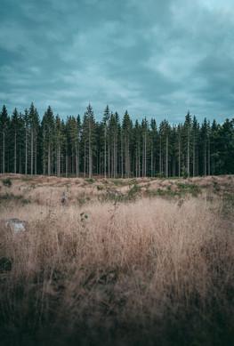 WWW.CHRISTOF-WOLF.COM_Schweden_Fotograf_