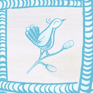 Bird Illustration For Cushion Cover