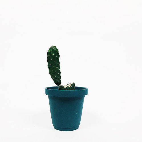 Matt Glaze Mini Plant Pot -Matt Teal