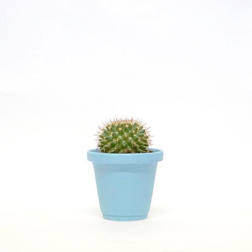 Matt Glaze Mini Plant Pot -Sky Blue