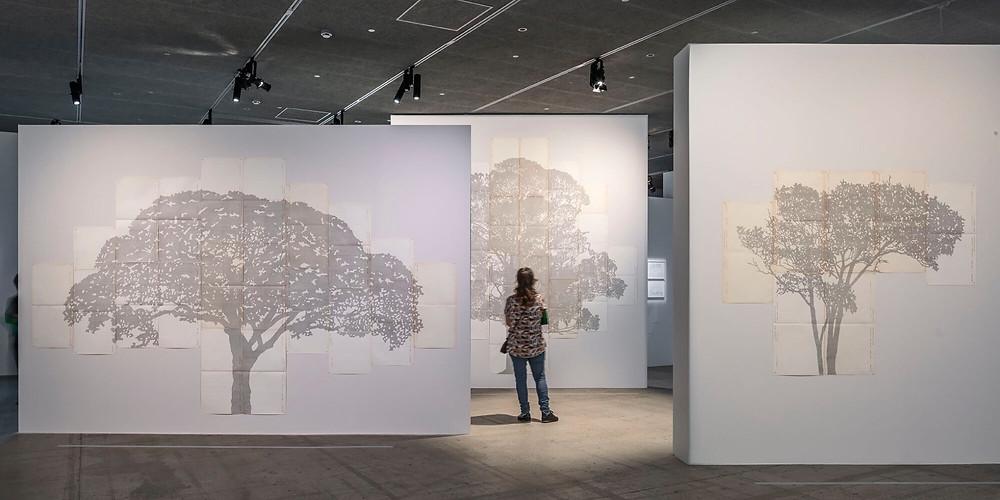 Jaguar Arte parle sur la nouvelle exposition à la Fondation Cartier pour l'art contemporain: Nous les Arbres
