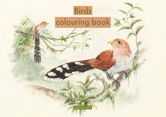 Birds colouring book