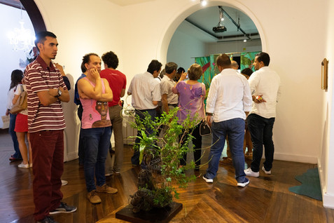 Art exhibition at the Alianza Francesa of Cali Colombia