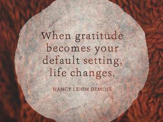 Gratitude Abound