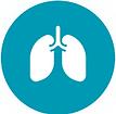 pulmonology-1.png