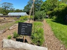 Pencoed Community Garden