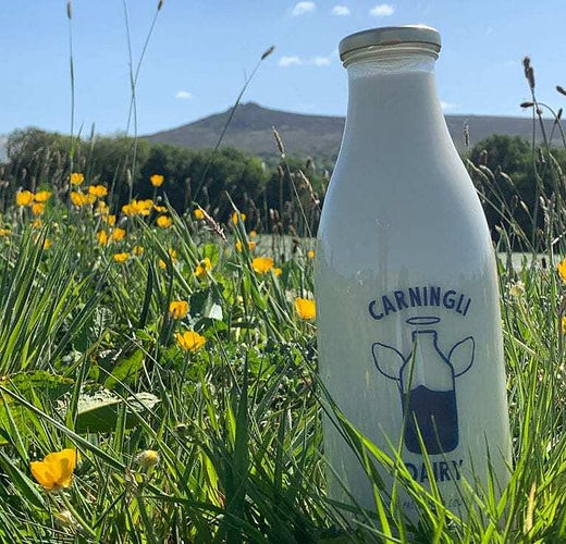 Carningli Dairy.jpg