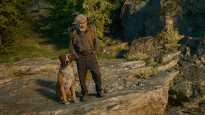 'The Call Of The Wild' Review