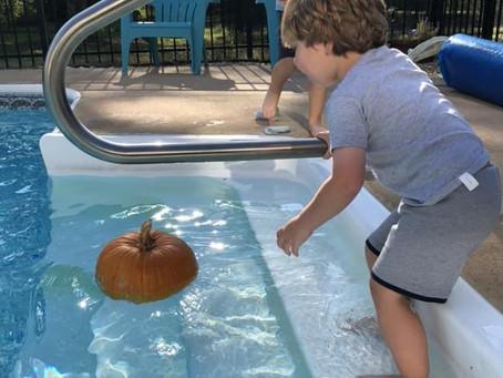 Growing Post: It's Halloween!