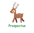 Prospectus.png