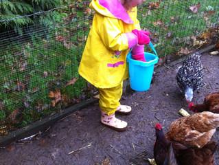 Meaningful Animal Encounters in Preschool