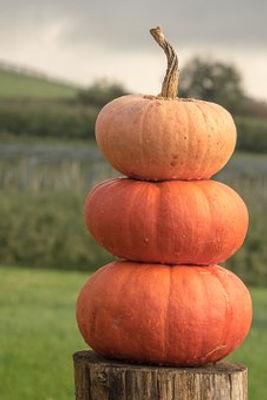 pumpkin cairn.jpg