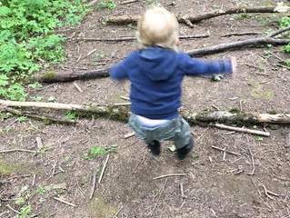 Using Sobel's Styles of Play to Guide Toddler Nature Experiences