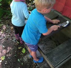 Simple Ways to Create Classroom Community with Nature