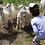 Thumbnail: Echo Farm