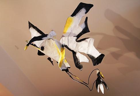 Oiseau blanc, jaune et noir