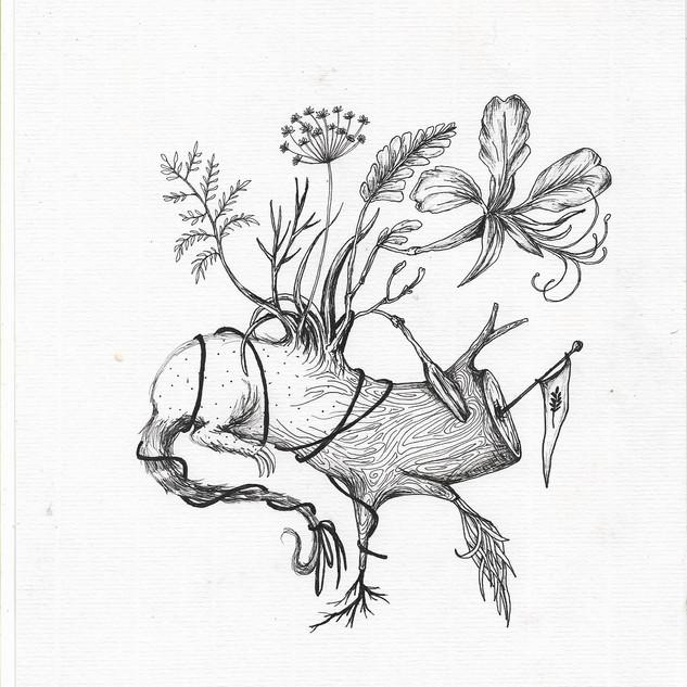 ser flor, ser híbrida - Efe Godoy (3).jp