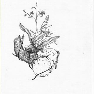 ser flor, ser híbrida - Efe Godoy (12).j