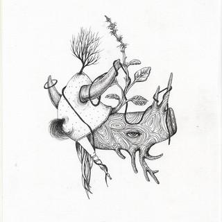 ser flor, ser híbrida - Efe Godoy (17).j