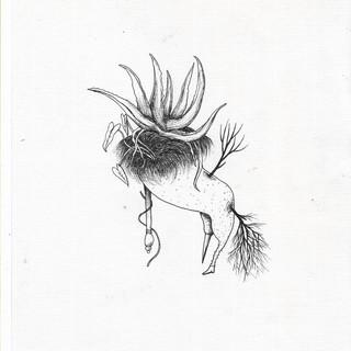 ser flor, ser híbrida - Efe Godoy (2).jp