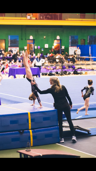 Industry Gymnastics Vault