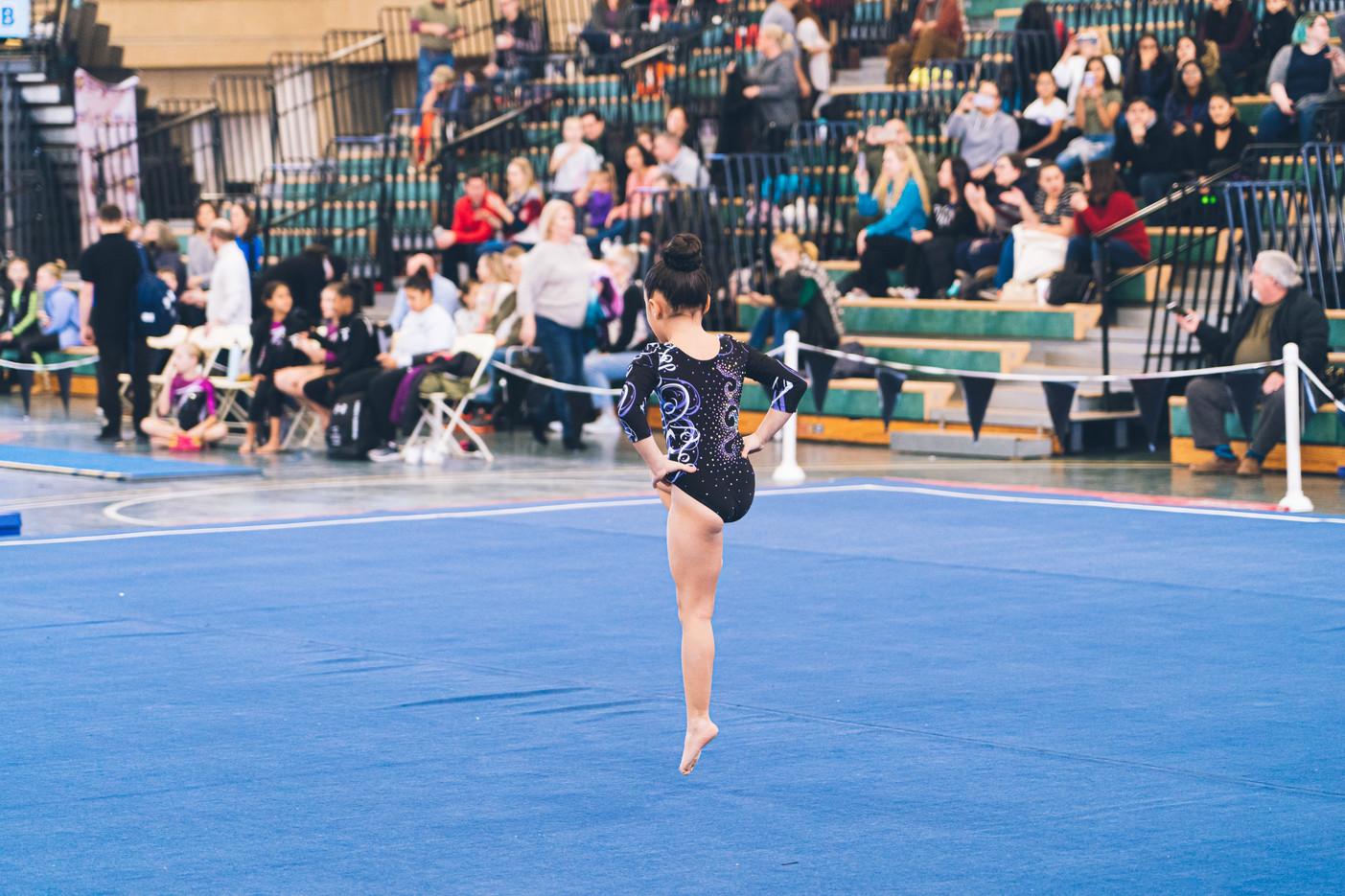 Industry Gymnastics Floor