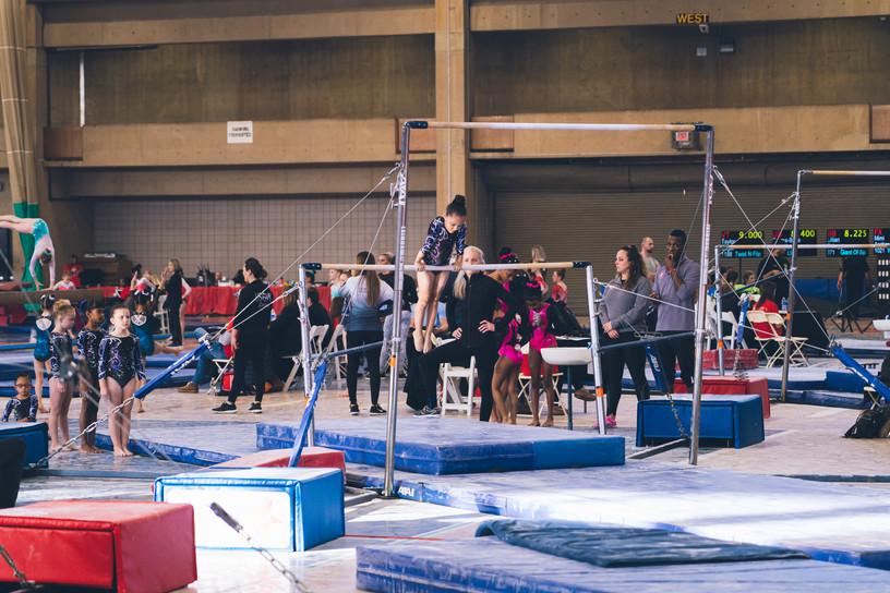 Industry Gymnastics bars