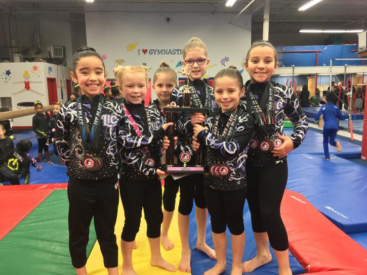 Industry Gymnastics Team