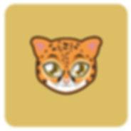 Cat Special Needs Version .jpeg