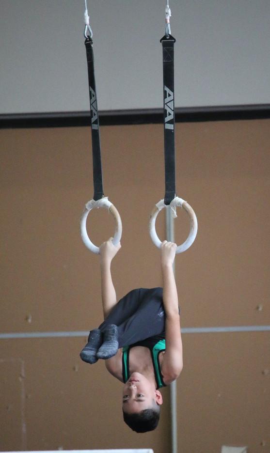 Industry Gymnastics Rings