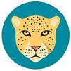 Jaguars-Teal.jpg