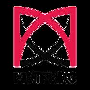 Мэтрикс логотип.png