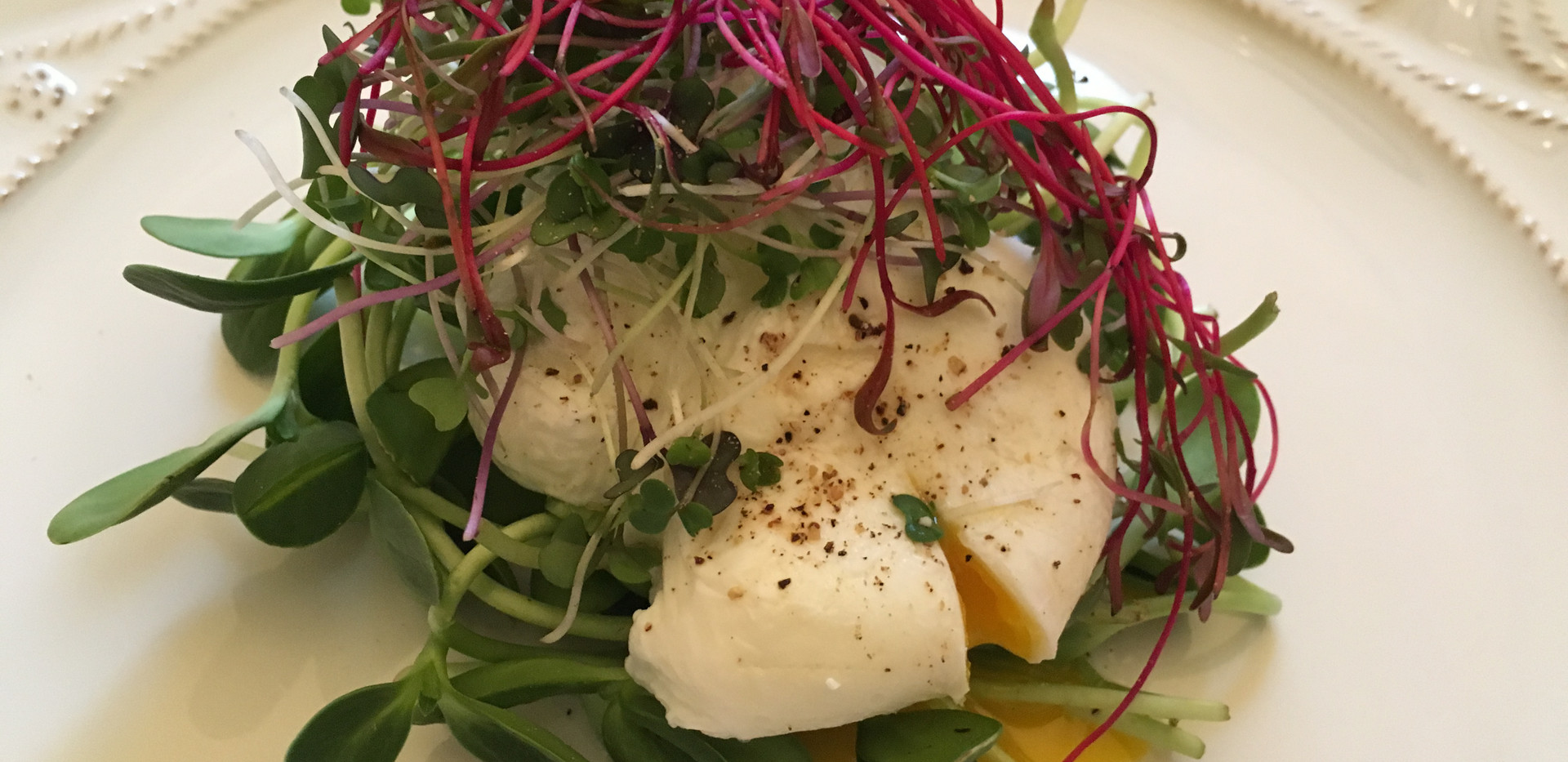 Poached Egg w Beet, Radish, Sunflower Mi