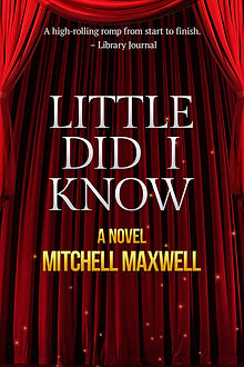 Little Did I Know Podcast tie-in cover.j