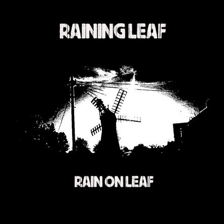 RAINING LEAF - RAIN ON LEAF (DOM011)
