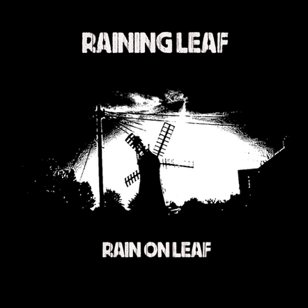 RAINING LEAF - RAIN ON LEAF (DOM011)