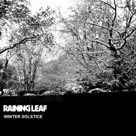 RAINING LEAF - WINTER SOLSTICE (DOM013)