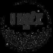 Logo_vektor_tisknisi 2000px tiny.png