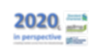 2020 campaign logo.png