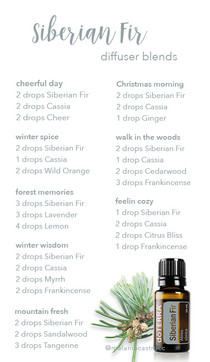 Siberian Fir + Cassia Diffuser Blends