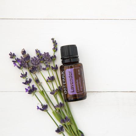Lavender w buds Hi Res Corproate.jpg