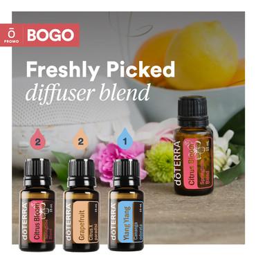 March_2020_WA-Assets_BOGO_Diffuser-Blend