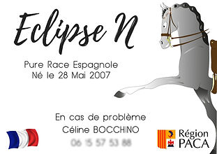 Plaque de box - Eclipse N