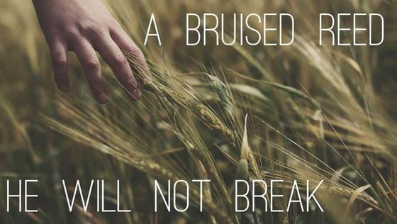Bruised but not Broken