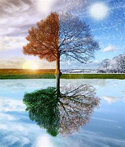 Let the Seasons Change...