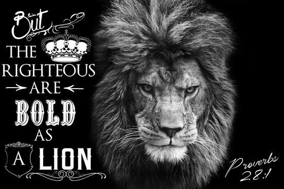 Bold as A Lion