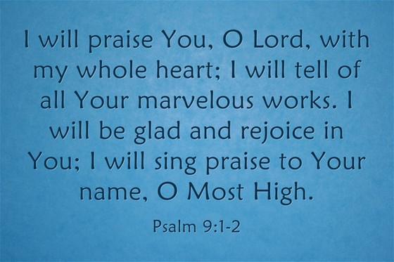 A High Praise!