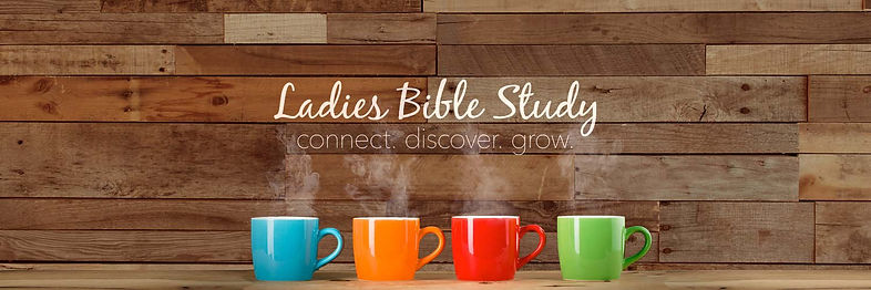 Ladies Bible Study Banner.JPG