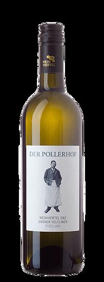 Weinviertel DAC Grüner Veltliner Phelling 2018