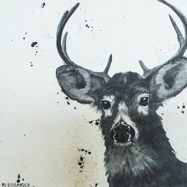 Wildlife #1